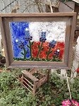 Texas Bluebonnet Framed Art