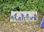 Bluebonnet Welcome Stone